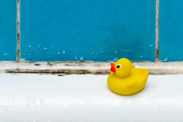 mold in bath, a duck toy, bathroom closeup